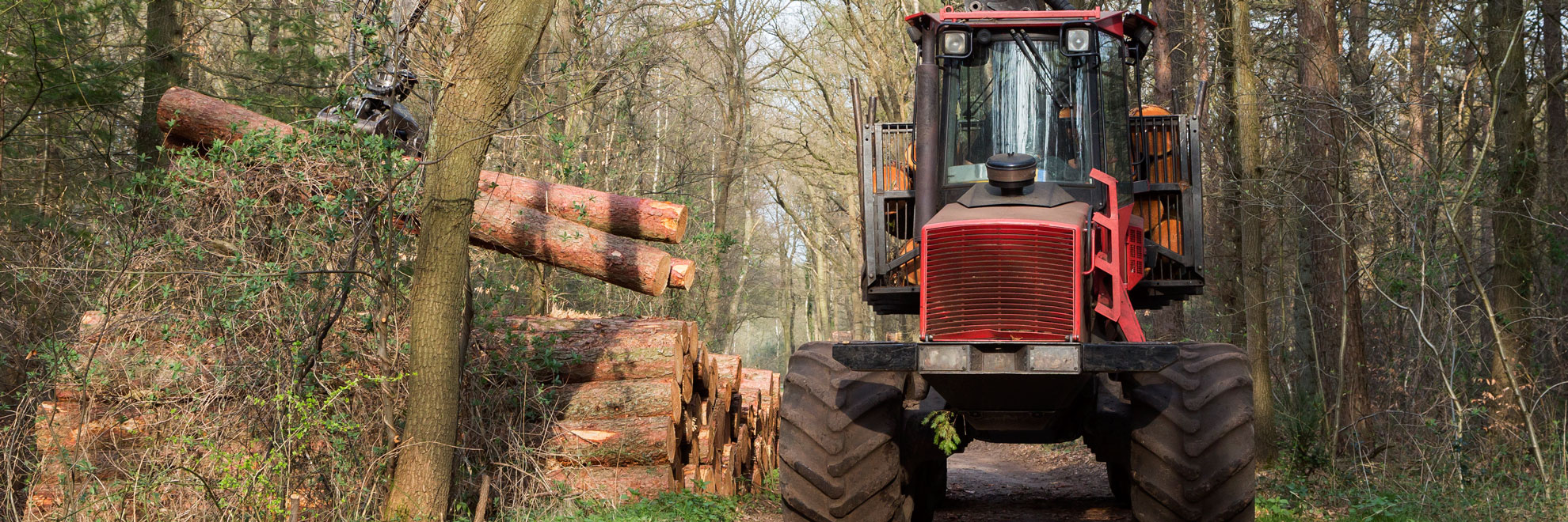 forestry with tractor
